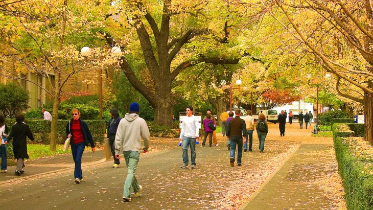 International students in Australia must cautiously choose options amidst fee hike