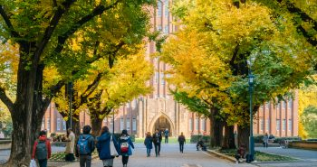 What are the most popular courses for international students in Australia