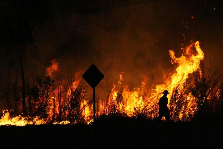 Why visiting Australia post bushfires is as yet a decent arrangement