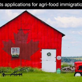 Agri food immigration pilot